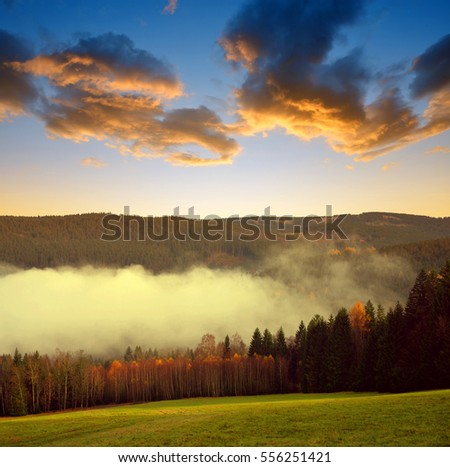 Beautiful landscape in the National park Sumava at sunset, Czech Republic #556251421