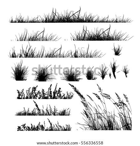 Set grass. Vector Royalty-Free Stock Photo #556336558