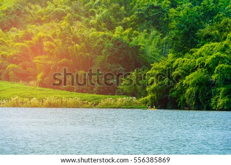 landscape Forest river View and sky  #556385869