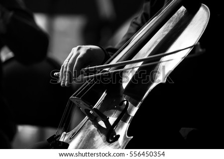 Musician hand playing the cello in black and white #556450354