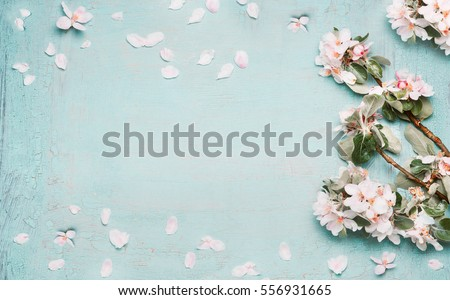 Spring nature background with lovely blossom in blue  pastel color, top view, banner. Springtime concept Royalty-Free Stock Photo #556931665
