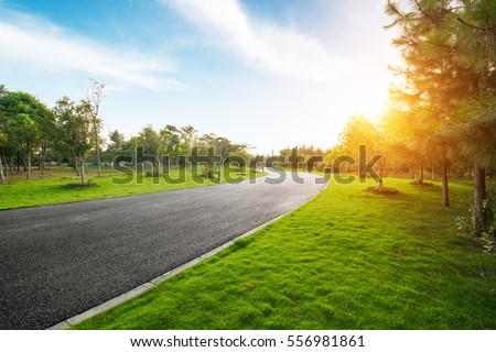 Sunrise in the beautiful park #556981861