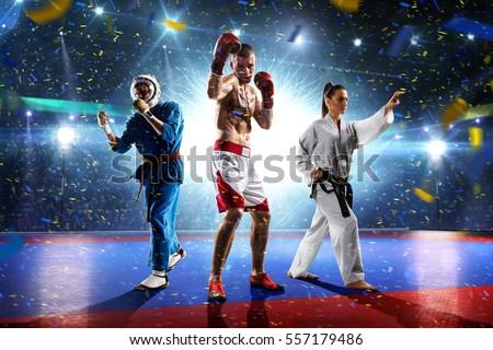 Multi sports boxing karate taekwondo collage on grand court Royalty-Free Stock Photo #557179486