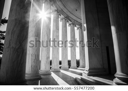 Ionic columns Royalty-Free Stock Photo #557477200