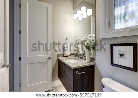 Light gray bathroom interior in luxury home showcases dark wood vanity cabinet with granite counter top and mosaic backsplash. Northwest, USA