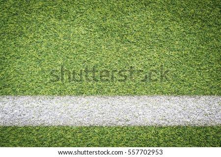 white stripe on soccer field #557702953