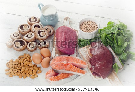 Foods Highest in Natural Vitamin B2. Healthy diet food.  #557913346