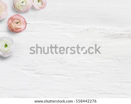 Styled stock photo. Feminine desktop mockup with ranunculus flowers, empty space and shabby white backround. Top view. Picture for blog or social media.