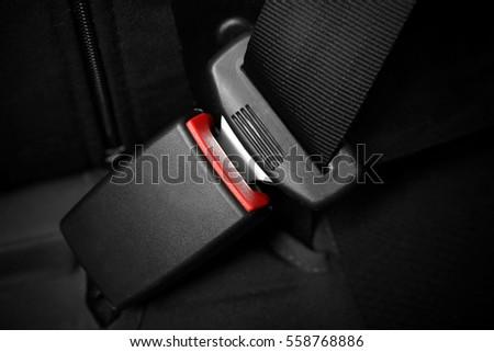 Seat belt on black car seat #558768886