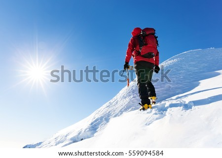 Extreme winter sports: climber reachs the top of a snowy peak in the Alps. Concepts: determination, success, brave. #559094584