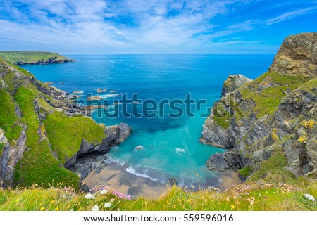 View of the South Devon coast, England, in the summer with clear waters, blue sky and grass. Royalty-Free Stock Photo #559596016