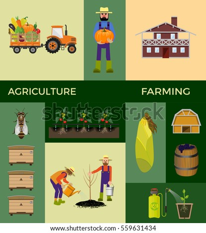 Vector illustrations for agricultural and farming. #559631434
