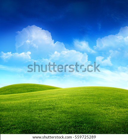 Green grass field on small hills and blue sky with clouds #559725289