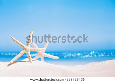 white starfish with ocean, on white sand beach, sky and seascape, shallow dof #559786435