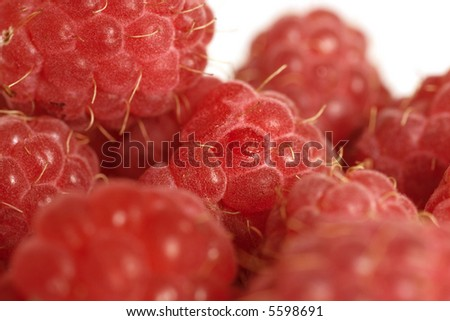a lot of raspberry of red color on a white background #5598691