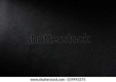 Close up of a section of a black leather swatch showing grain and a shaft of light across Royalty-Free Stock Photo #559993375