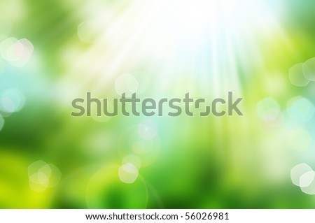 Beautiful Nature Bokeh.Blurred background