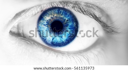 beautiful human eye, macro, close up  blue, yellow, brown,  Royalty-Free Stock Photo #561135973