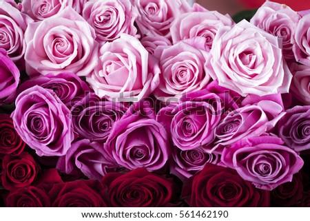 Valentines day #561462190