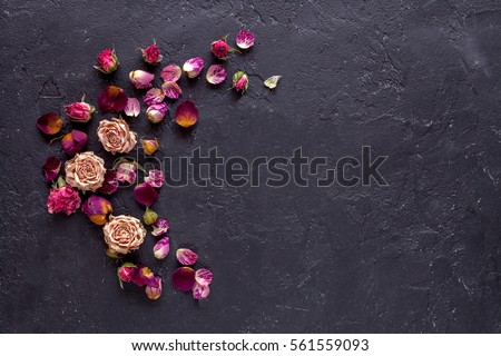 Beautiful flowers on grunge dark background #561559093