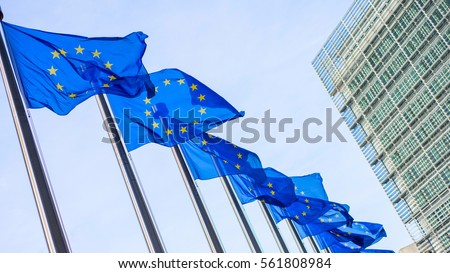 European Union flags in front of the Berlaymont building #561808984
