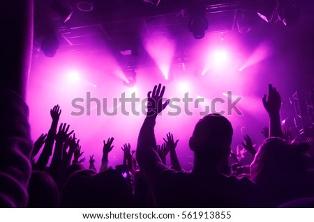 Raised hands of fans during a concert (show or performance) on the background of purple rays of light  #561913855
