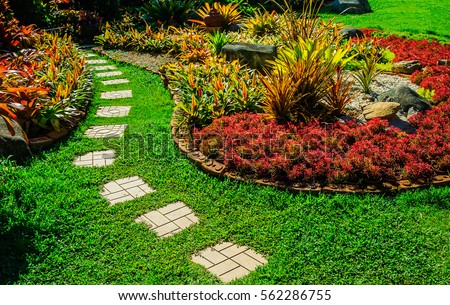 Garden landscape design with pathway intersecting bright green lawns and shrubs white sheet walkway in the garden Landscape design with colorful shrubs, grass with bricks pathways, lawn care service. #562286755