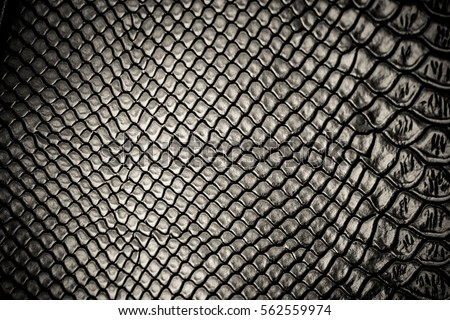 Black snake skin pattern texture background #562559974