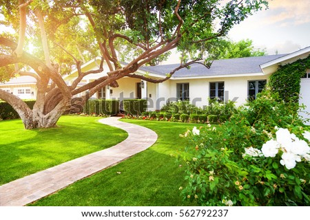 Beautiful white color single family home in Phoenix, Arizona USA with big green grass yard, large tree and roses Royalty-Free Stock Photo #562792237