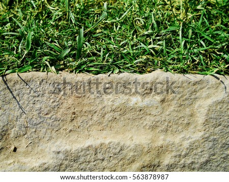 beautiful background stone with the grass. #563878987