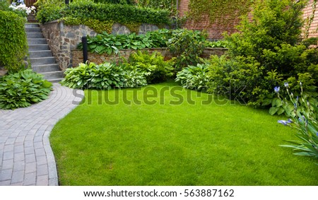 Garden stone path with grass growing up between the stones #563887162
