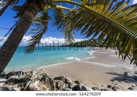 Saint Martin, Sint Maarten: Caribbean Beaches & Golf Course #564278209