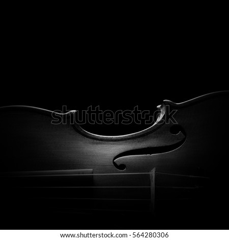 Violin orchestra musical instruments close up isolated on black. Music background with violin