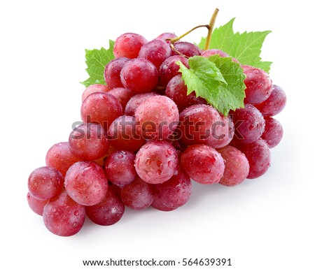 Ripe red wet grape with drops. Pink bunch with leaves isolated on white. With clipping path. Full depth of field. #564639391