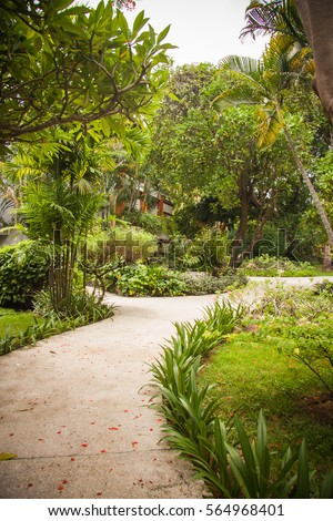 Bali luxury villa, tropical paths in jungle #564968401