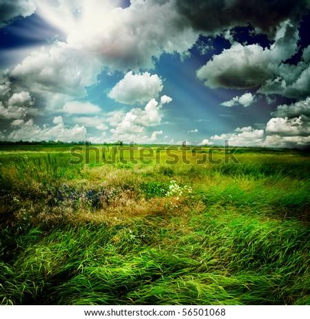 Beautiful Nature Rural Landscape #56501068