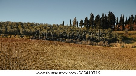 Tuscan Landscape near Mercatale Val di Pesa, Florence - Italy #565410715