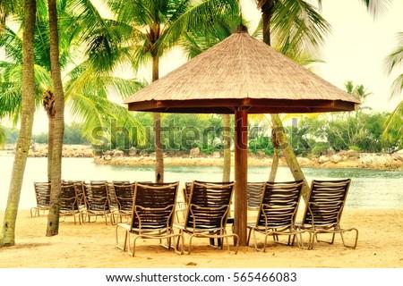 Deckchairs on Sentosa Island Beach, Singapore #565466083