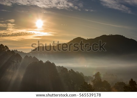 Morning Landscape of Strawberry garden with sunrise at Doi Ang Khang , Chiang Mai, Thailand  #565539178
