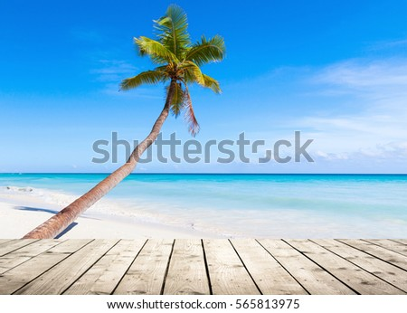 Empty wooden pier on Caribbean Sea coast. Coconut palm grows on white sandy tropical beach on a background #565813975