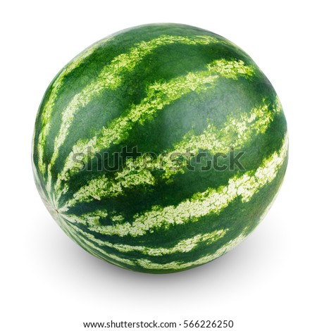 Ripe single full watermelon berry isolated on white background. One whole watermelon with clipping path #566226250