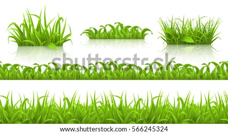 Spring grass seamless pattern and icons, 3d vector set Royalty-Free Stock Photo #566245324