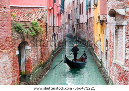 Venetian gondolier punting gondola through green canal waters of Venice Italy #566471221