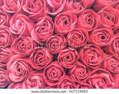rose background in vintage color theme for Valentine day #567119083