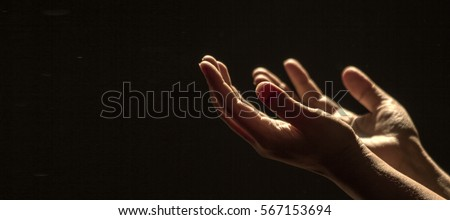 Hands praying Royalty-Free Stock Photo #567153694