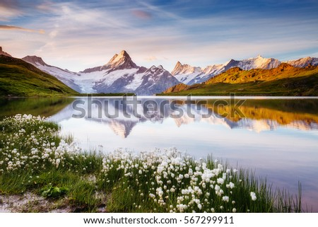 Great view of Bernese range above Bachalpsee lake. Dramatic and picturesque scene. Popular tourist attraction. Location place Swiss alps, Grindelwald valley, Europe. Artistic picture. Beauty world.