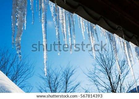beautiful icicles shine in sun against blue sky. spring landscape with ice icicles hanging from roof of house. Royalty-Free Stock Photo #567814393