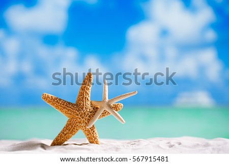 red and white starfish with ocean, on white sand beach, sky and seascape, shallow dof #567915481