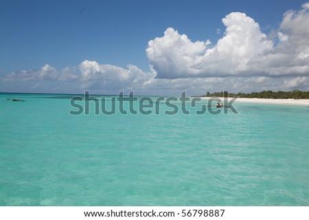 zanzibar beach #56798887