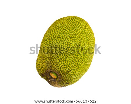 Isolated green jackfruit on white #568137622